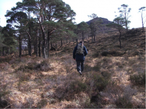 Walking in Torridon, Scotland.